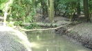 Kedvenc forrásom, tavam, folyóm - egyéb (fotó, montázs, videó)
