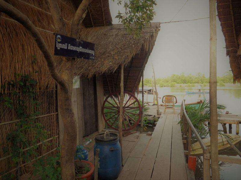 Turistaház a mangrove-ültetvényen